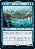 【JPN】怒り狂う島嶼、キャリクス/Charix, the Raging Isle[MTG_ZNR_049R]