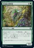 【JPN】★Foil★玉虫色の角甲虫/Iridescent Hornbeetle[MTG_ZNR_187U]